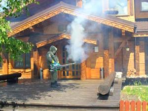 фумигация фосфином в деревянном доме